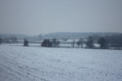 013-Winterland0003