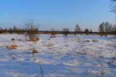 2009-12-14, Winter 387