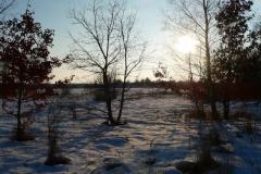 2009-12-14, Winter 388
