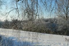 Eismorgen 021