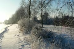 Eismorgen 022