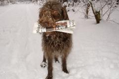 Winterbilder 006